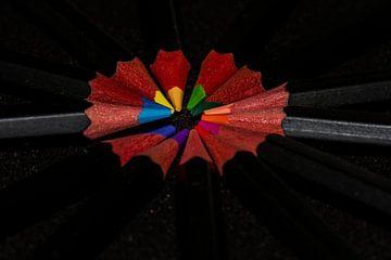 Licht auf die Farben von JM de Jong-Jansen