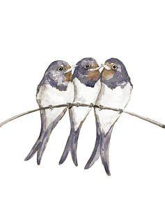 Drie jonge zwaluwen