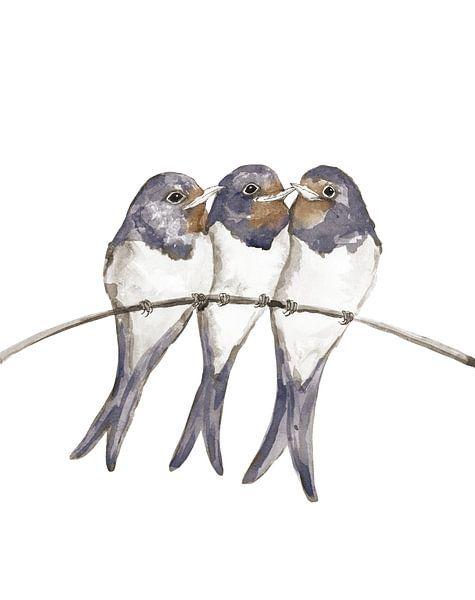 Drie jonge zwaluwen van Bianca Wisseloo