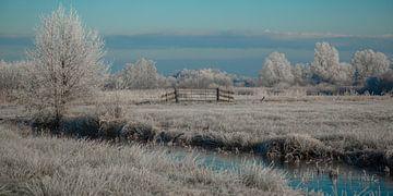 tweeluik: winter in de wieden van Annie Keizer