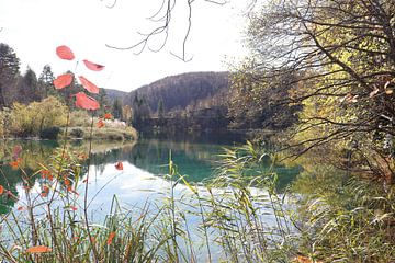 Plivic-Seen von Emma Wilms