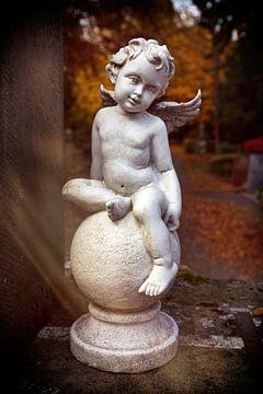 kleiner Engel von Norman Krauß