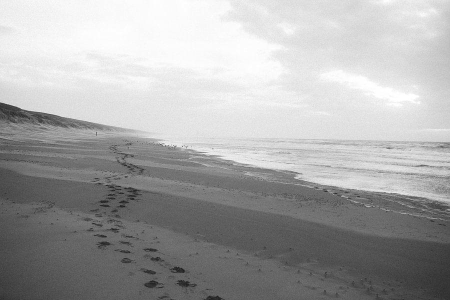 Voetstappen in het zand van Stephan de Haas