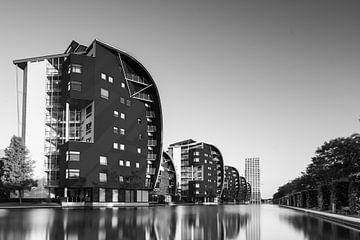 Armada Den Bosch Zwart Wit van Martijn Kort