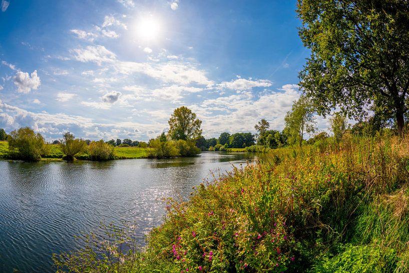Summer landscpae van Günter Albers