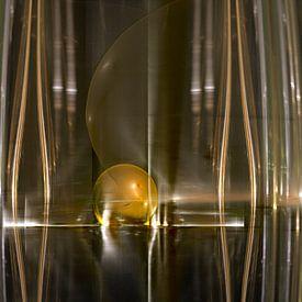 Gouden bal in riet van Shirley Hoekstra