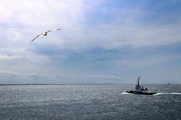 Zee uitzicht op Vlissingen strand von Kim de Been