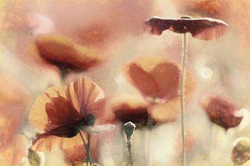 Mohnblumen von Lars van de Goor