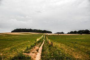 Landschap Groesbeek van David van Coowijk