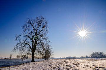 Stralende winterdag II van Jan Hoekstra