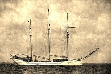 Sailing Home van