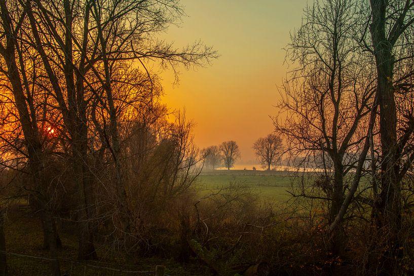 Landschap 'De Maas bij Maren-Kessel' van Willy Sengers