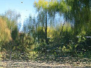 Urban Reflections 143 van