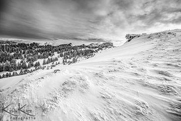 Frost von Kevin Kirz
