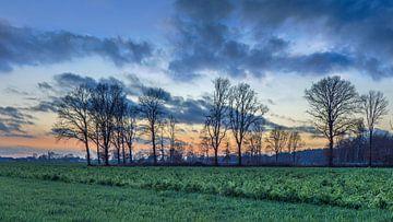 Landelijk landschap met veld, bomen en kleurrijke zonsondergang van Tony Vingerhoets