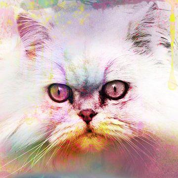 Kat, Poes, Kunst, Kleurrijk, Uniek van Debby Loohuis
