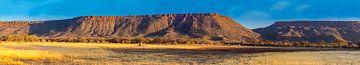 Waterberg Plateau in de avondzon, Namibië van Rietje Bulthuis