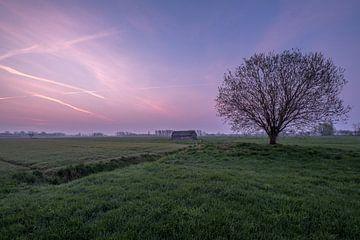 Weiland met boom en schuur bij zonsopkomst 06 von Moetwil en van Dijk - Fotografie