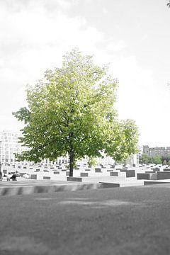 Boom op holocaust memorial Berlijn