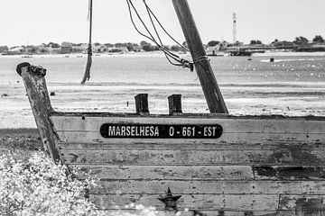 Scheepswrak Marselhesa Algarve Portugal van Mario Brussé Fotografie
