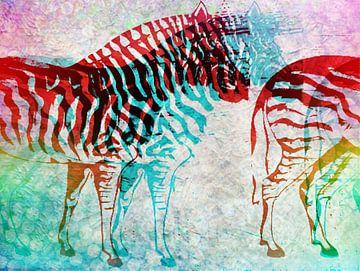 Zebra Schimmen   von Nicky`s Prints