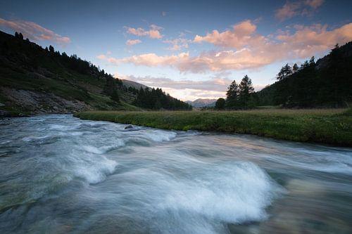 Alpiene zomerkleuren