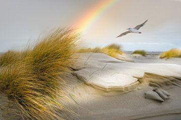 Strand von Terschelling von Gerard Wielenga