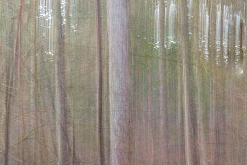 arbres abstraits sur Tania Perneel