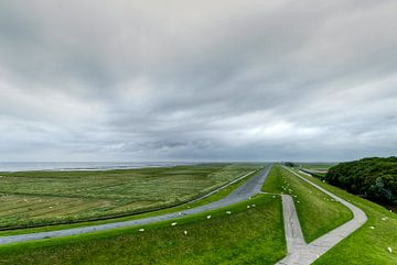 een kijkje in de kwelder von Marnefoto .nl