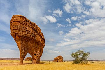 Bizarre Felsformationen auf dem Ennedi-Plateau im Tschad von Paul de Roos