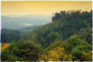 palatinate forest van Bernd Hoyen