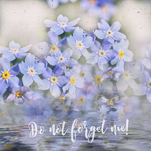 Vergeet me niet!