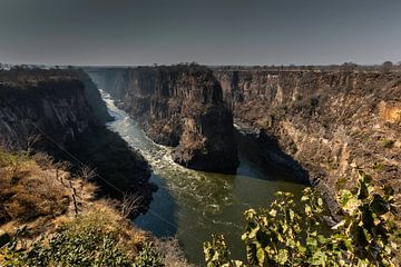 Zambezi nabij Victoria Falls van Henri Kok