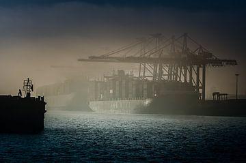 Containerschip ligt in de mist bij de containerterminal in Hamburg van Ingo Boelter