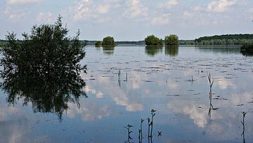 Le Lac d'Orient von Yvonne Blokland