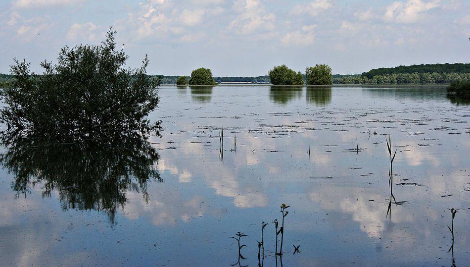 Le Lac d'Orient van Yvonne Blokland