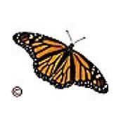 Monarch C. profielfoto