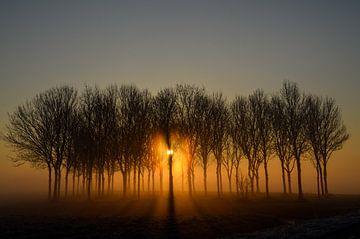 Mystieke zonsopkomst von Yvonne van der Meij
