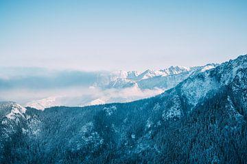 Blauw Berglandschap in Winter van Patrycja Polechonska