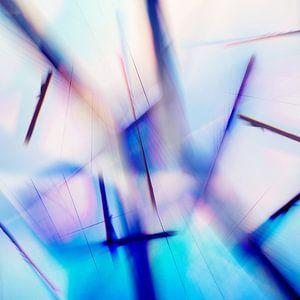 Quantum Entanglement van