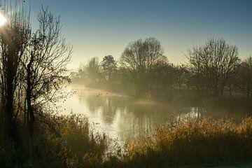 Bach im Nebel von Willian Goedhart