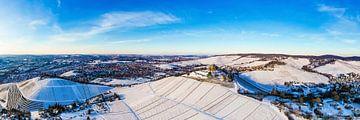 Luftbild Stuttgart mit der Grabkapelle im Winter von Werner Dieterich