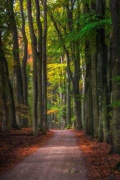 Folgen Sie der Straße. Folgen Sie der Straße... von Henk Pijnappels