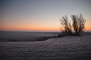 Holland winter landschap van Rico Drost