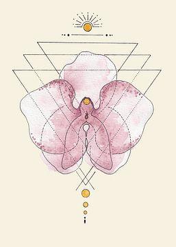 grafische Orchidee, femininer Fokus. von Kirsten Jense Illustraties.
