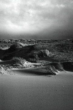 Dünen in Den Helder 2 von Jurrian Tanke