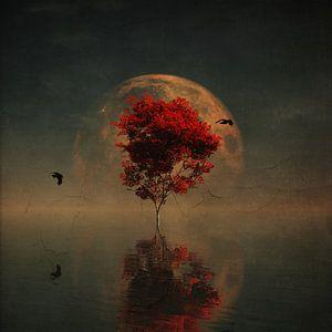 Rode boom in volle maan