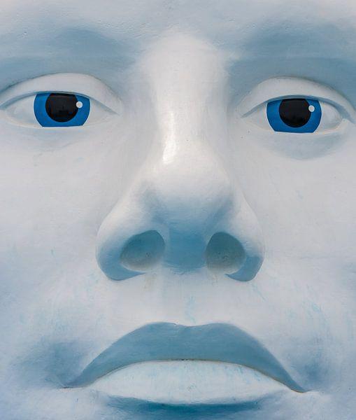 The Face van Brian Morgan