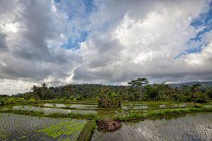 Omgeving Agungvulkaan tijdens op eiland van Bali in Indonesië