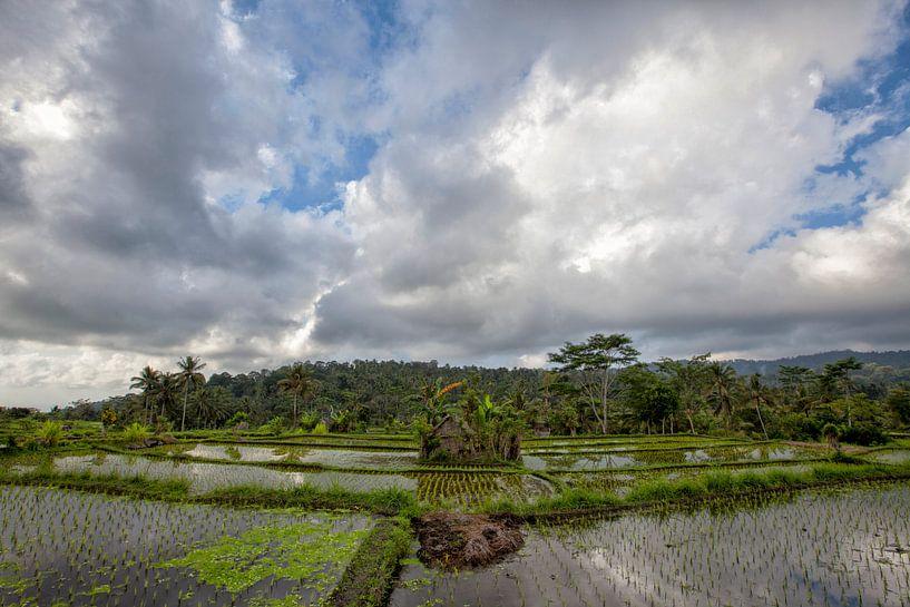Omgeving Agungvulkaan tijdens op eiland van Bali in Indonesië van Tjeerd Kruse